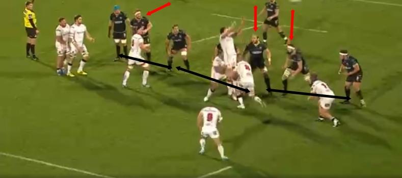 Thornton analysis 2